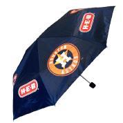 Astros050413-Umbrella