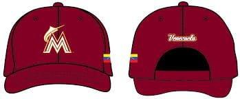 Marlins062913-Hat