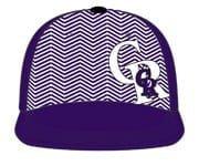 Rockie060913-Hat