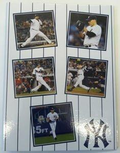 Yankees090113-Binder