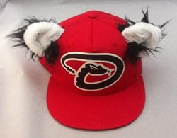 Diamondback_Baxter hat_060114