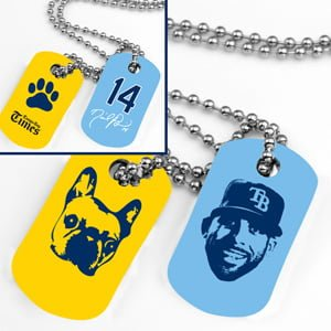 Tamps Bay Rays _052514-dogtags