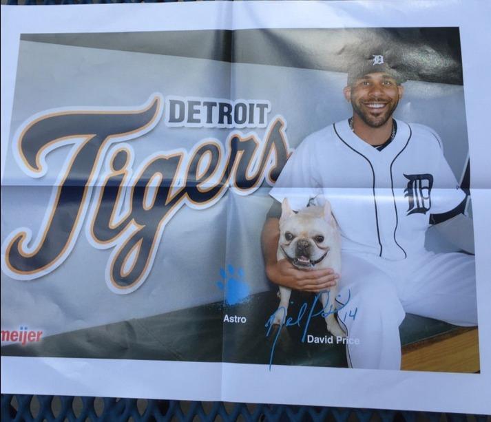 david price poster - detroit tigers