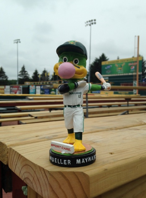 mueller maynard bobblehead - madison mallards - northwoods league