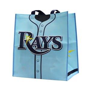 Tampa Bay Rays Tote Bag 9-24-2016