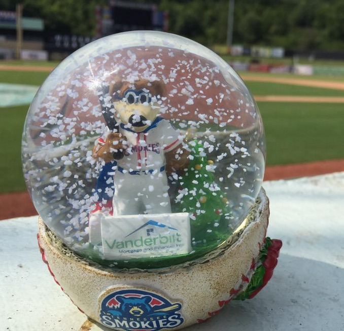 snowglobe - tennessee smokies - chicago cubs