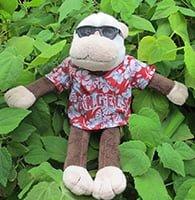 Texas Rangers_hawaiian_monkey_7-22-15