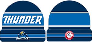 Trenton Thunder Knit Cap 4 7 2016 - Miami Marlins at Chicago Cubs