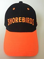 cap - delmarva shorebirds - 6-9-2016