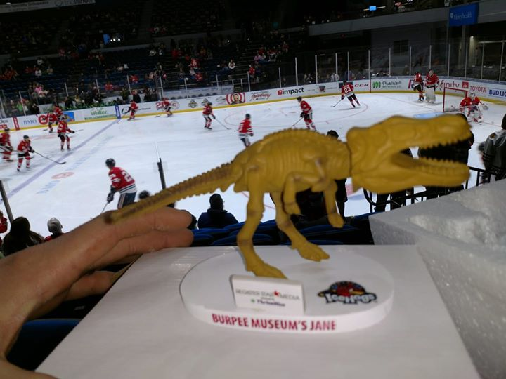 Rockford IceHogs3/16/2019 Jane the T-rex bobblehead