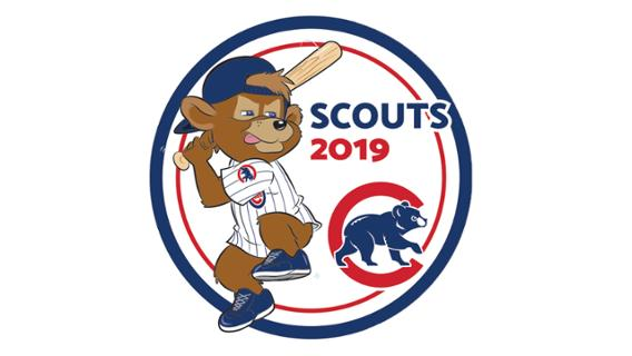 Cubs - Scout Patch