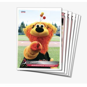 Albuquerque Isotopes Baseball Card Team Set