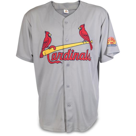 Adult Road Gray Embroidered Jersey